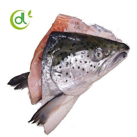 Đầu cá hồi Nauy